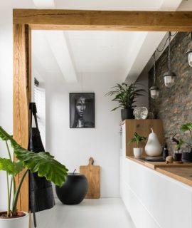 cuisine blanche avec bois plantes mur en pierres